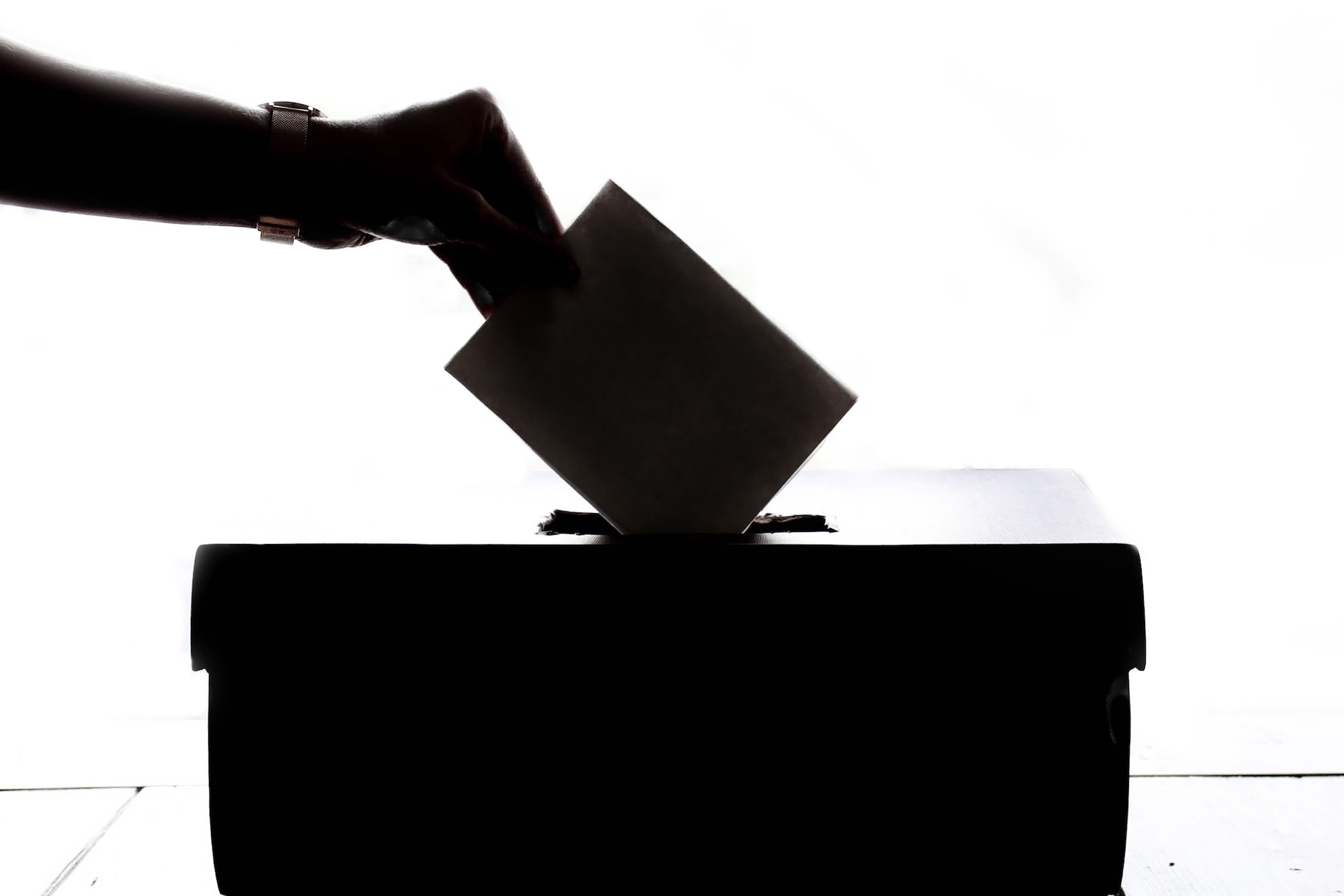 Data science in politics - polling image